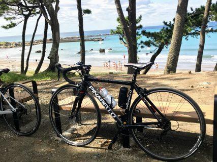 三浦半島をロードバイクで半周くらいした。